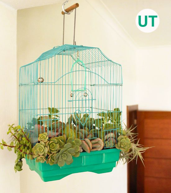 Birdcage Planter Upcycle That
