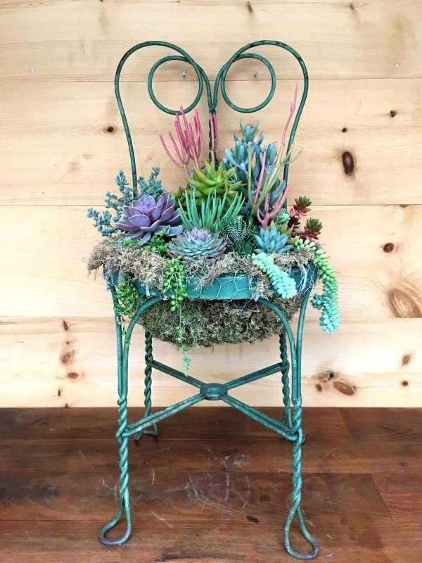 Upcycled garden ideas - chair planter
